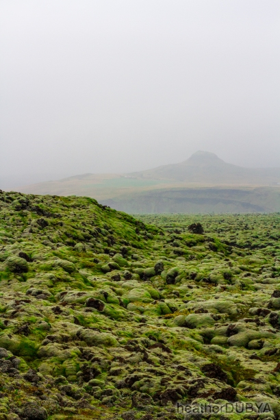Iceland (11 of 40)